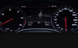 Magic and Mystery with Audi Night Vision Assistant