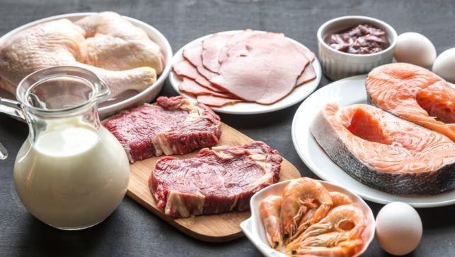 Top 11 Protein Foods