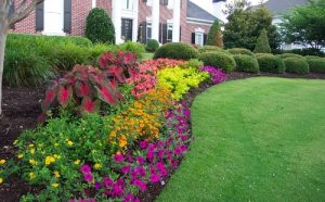 Using Flowers For Your Landscaped Garden